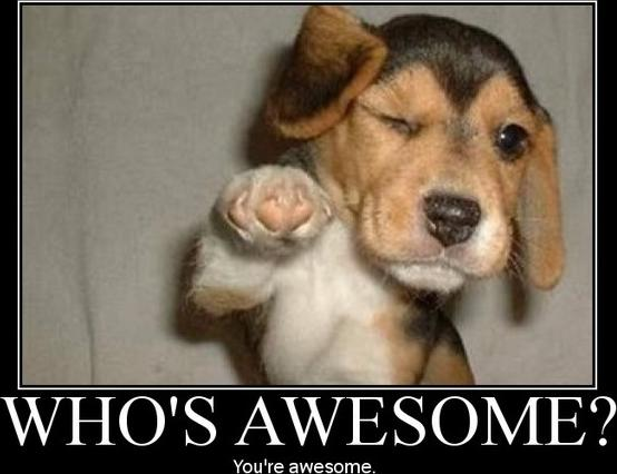 who-is-awesome-puppy