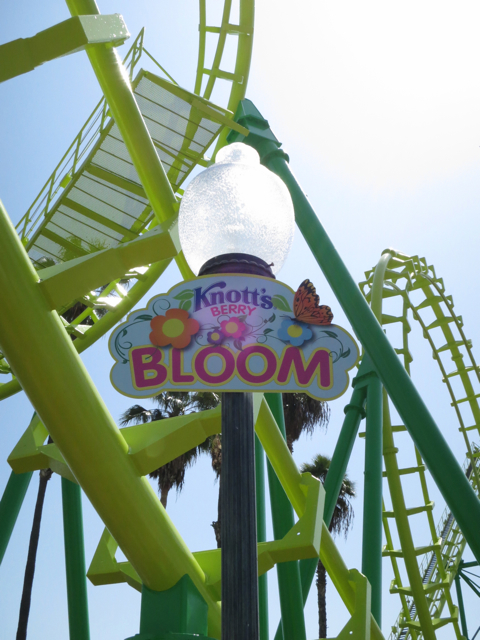 Springtime for Snoopy – Knott's Berry Bloom 2013