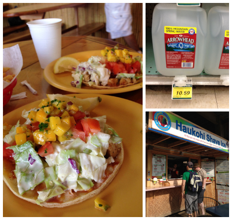 Coconuts Fish Tacos - crazy price for a gallon of water - Shave Ice