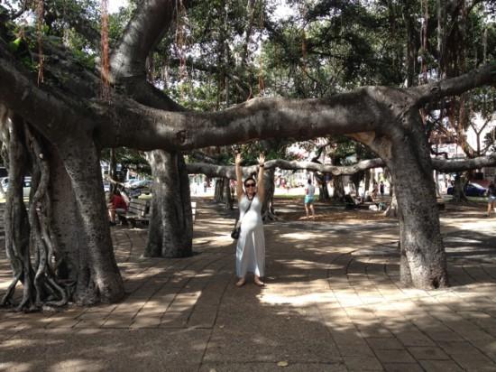 Banyan tree square - Old Lahaina - Maui babymoon