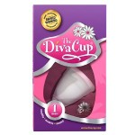 Diva Cup Review – Bloody Awesome (Guest Post)