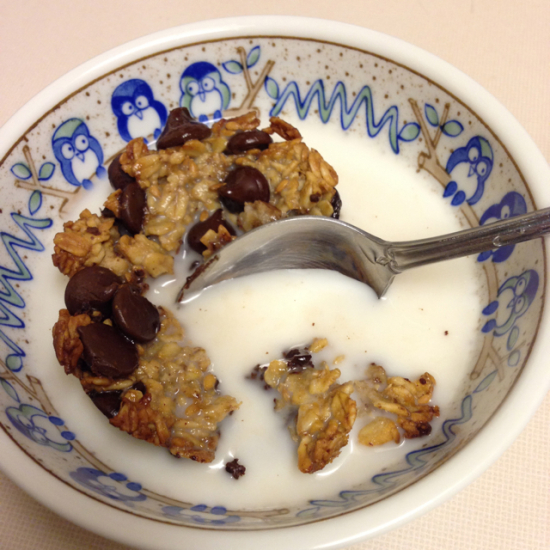 oatmeal chocolate chip breakfast cup - final