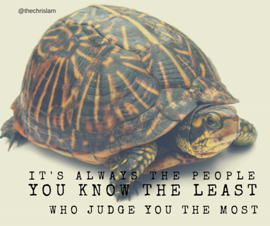 meme-people-judge-the-most-turtle