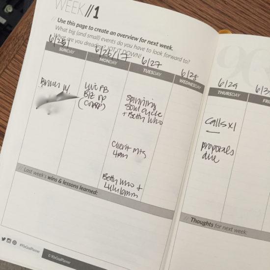 90x goal planner first week