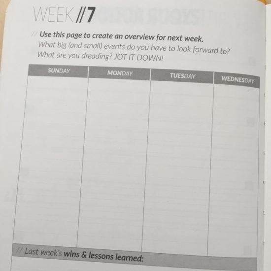 90x goal planner - weekly rewrite